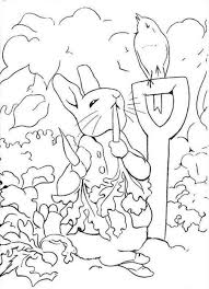 rabbit coloring pages in vegetable garden coloringstar