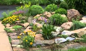 How To Create A Rock Garden Nifty Rock Landscape Design Interior Decorating Accessories Desert