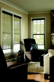 window blinds window shades cleveland shutters
