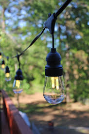 Edison Lights String by Led Edison Bulb String Lights 10 Edison Bulbs Gardeners Com