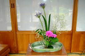 flower arranging for beginners ikebana a fleeting glance