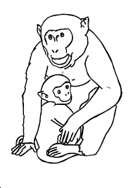 gorilla coloring pages getcoloringpages com