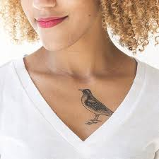 tattly designy temporary tattoos u2014 animals