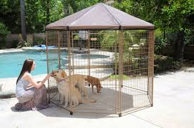4 best portable outdoor dog runs and playpens reviewed the