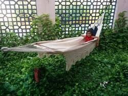 garden hammocks at best price in india
