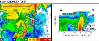 Radar Map Michigan by Weather Radar Shows Migrating Birds Encountering Severe Weather
