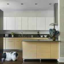 Modern Kitchen Flat Panel Cabinet Doors For The Home Pinterest - Modern kitchen cabinets doors
