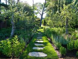 Apple Orchard Traditional Landscape New York By Sasco - Backyard orchard design