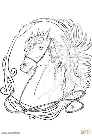 horse pictures you can color the original mane u0027n tail u2013 animal care