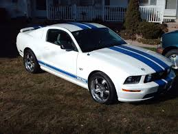 white mustang blue stripes blue racing stripes forums at modded mustangs