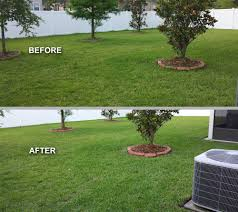 one call lawn and pest control jacksonville florida