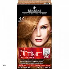 auburn copper hair color hair colors light auburn hair color chart awesome copper red hair