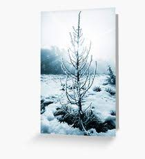 tree with artificial snow machine gifts merchandise