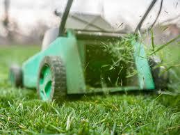 concimazione tappeto erboso cosa fare in giardino a primavera la manutenzione prato one
