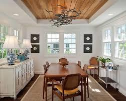 tray ceiling dining room ideas photos houzz