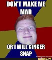 Ginger Memes - mad ginger memes memes pics 2018
