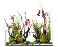 Aquascape Aquarium Designs Fish Aquascape Aquarium Home Design With Hd Resolution 1500x1229