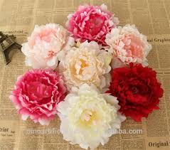 Wholesale Peonies 100 Wholesale Flowers Peonies Peonies Wholesale Bulk