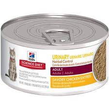 hill u0027s pet nutrition cat food ebay