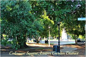 New Orleans Garden District Map by The Lower Garden District In The New Orleans Condo Market Home To