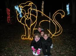 Columbus Zoo Lights by Wade Family News