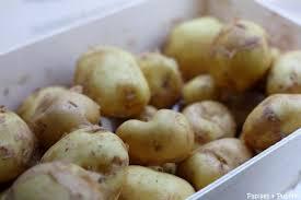 comment cuisiner les pommes de terre de noirmoutier la bonnotte de noirmoutier est arrivée