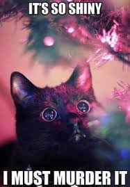 Christmas Cat Memes - 25 funny cat memes christmas lights black cats and captions