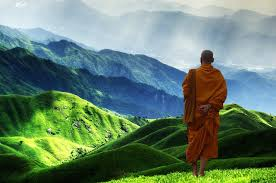 the monk who sold his ferrary 20 deeply insightful quotes from the monk who sold his