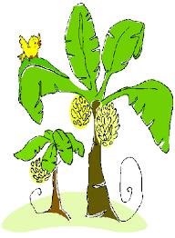bananatree birdie gif