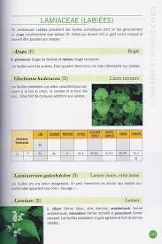 cuisine sauvage couplan livre nature promonature plantes bioindicatrices cuisine sauvage