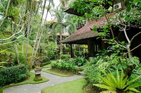how to bring balinese style and design home hipages com au