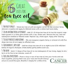 top 10 terrific uses for tea tree essential oil
