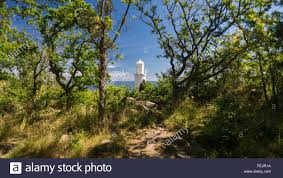 white lighthouse in the bright sunlight trees in the stock