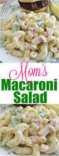 Creamy Pasta Salad Recipes by Best 25 Macaroni Salads Ideas On Pinterest Easy Cold Pasta