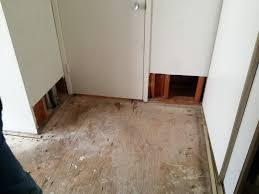 Laminate Flooring Flood Damage Dryfast Crew Were Called In To A Flooded Apartment In Windsor
