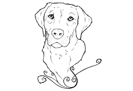printable 16 golden retriever coloring pages 4703 golden