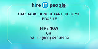 Sap Basis Resume 2 Years Experience Sap Basis Consultant Resume Profile Hire It People We Get It Done