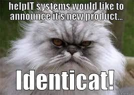 Persian Cat Meme - funny looking persian cat quickmeme