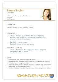 curriculum vitae format for freshers doc resume sle doc zippapp co