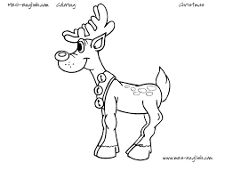 dltk colouring animals coloring pages rabbit rabbit coloring