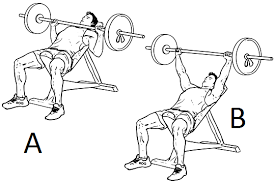 Flat Bench Press Dumbbell Most Globally Accepted Tips About Fitness