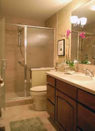 apartment bathroom decorating ideas themes home redesign doorless