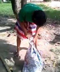 boxer dog kills man disturbing facebook video shows man u0027killing dog by slitting its