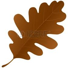 thanksgiving leaves clipart brown fall leaves clipart