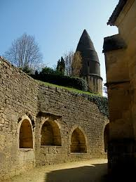 medieval times thanksgiving medieval times stevil