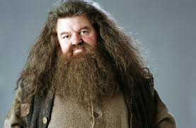 remember rubeus hagrid u0027harry potter u0027 actor robbie