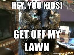 Angry Cat Meme Generator - average jane average jane s meme worthy cat