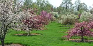 Arboretum by Secrest Arboretum Oardc American Public Gardens Association