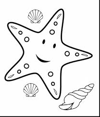awesome sea shell clip art with starfish coloring page