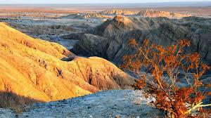 anza borrego anza borrego desert state park stunning stillness unforgettable